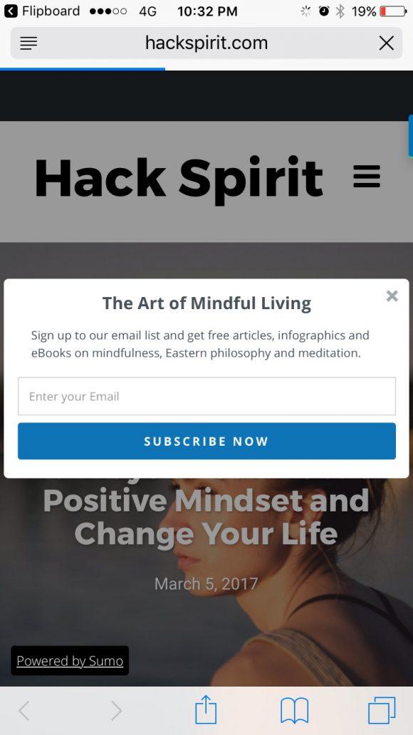 Hack Spirit newsletter subscription box